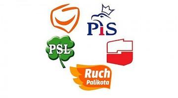 Jakie strategie i plany dotyczące społeczeństwa informacyjnego i gospodarki opartej na wiedzy miały partie polityczne biorące udział w wyborach parlamentarnych 2011 roku;